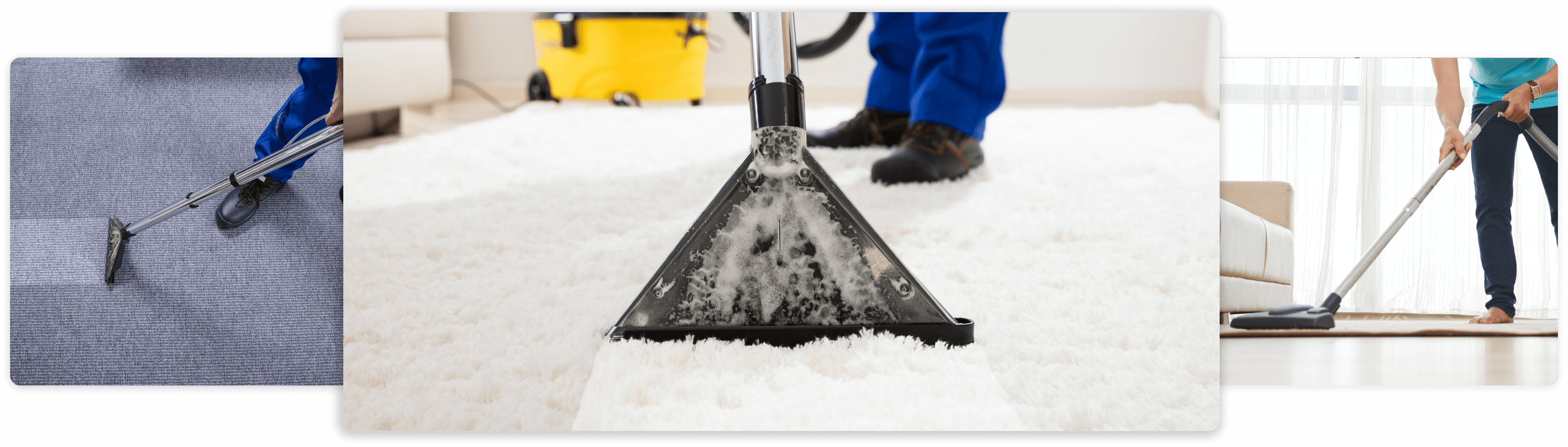 Business Software for Carpet Cleaning